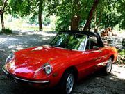 1980 Alfa Romeo Alfa Romeo Spider 2 door convertible