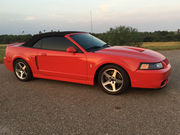 2003 Ford Mustangcobra